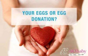 Egg donor surrogacy