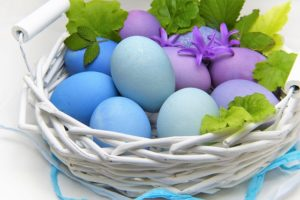 Easter Eggs: How to Improve Eggs quality