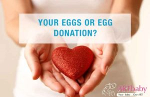 Egg donor surrogacy