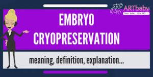 Egg Cryopreservation, method of egg preservation