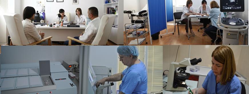 Surrogacy in Georgia and egg donation centre tbilisi georgia