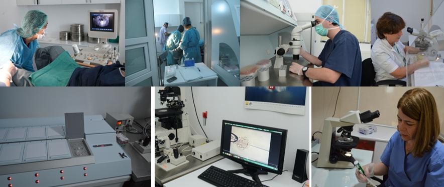 Surrogacy centre georgia tbilisi clinic pics