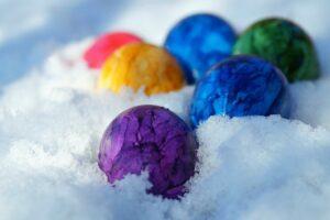 Egg freezing cost