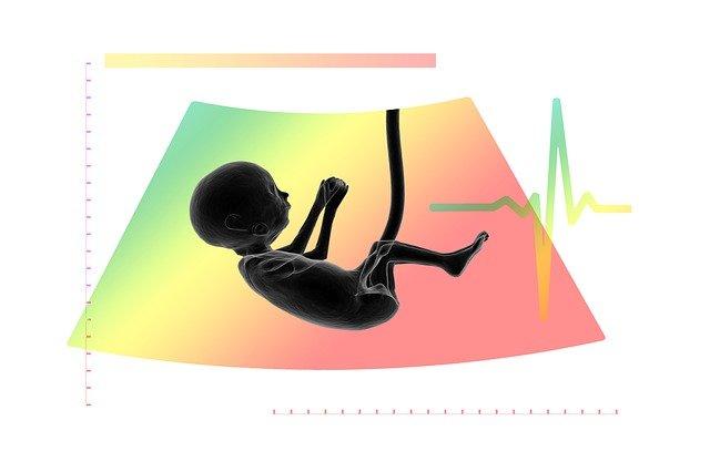 embryo freezing pros cons